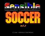 Sensible Soccer v1.1